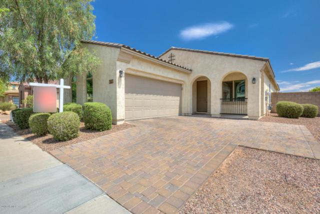 3061 E Ivanhoe Street, Gilbert, AZ 85295 (MLS #5781246) :: Lux Home Group at  Keller Williams Realty Phoenix
