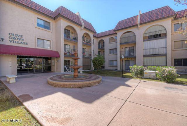 3033 E Devonshire Avenue #2017, Phoenix, AZ 85016 (MLS #5781271) :: My Home Group