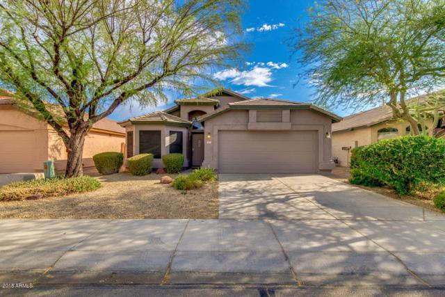 4711 E Jaeger Road, Phoenix, AZ 85050 (MLS #5781292) :: Kepple Real Estate Group