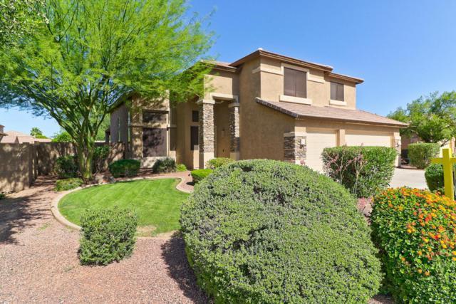 4622 N 129TH Avenue, Litchfield Park, AZ 85340 (MLS #5781311) :: Phoenix Property Group