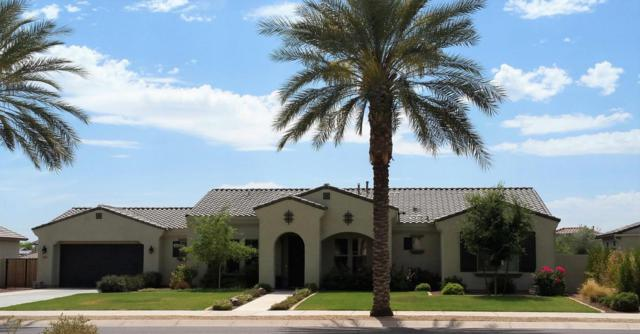 4618 N Village Parkway, Litchfield Park, AZ 85340 (MLS #5781320) :: My Home Group