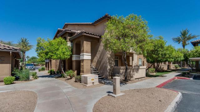 725 N Dobson Road #269, Chandler, AZ 85224 (MLS #5781347) :: Lux Home Group at  Keller Williams Realty Phoenix
