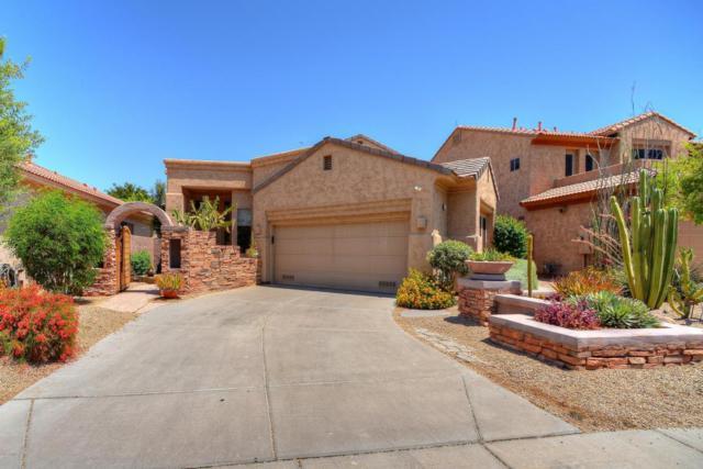 7618 E San Fernando Drive, Scottsdale, AZ 85255 (MLS #5781382) :: My Home Group