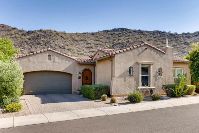 8453 W Whitehorn Way, Peoria, AZ 85383 (MLS #5781398) :: My Home Group