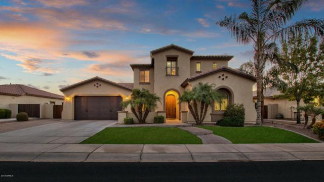 4340 S White Drive, Chandler, AZ 85249 (MLS #5781409) :: Essential Properties, Inc.