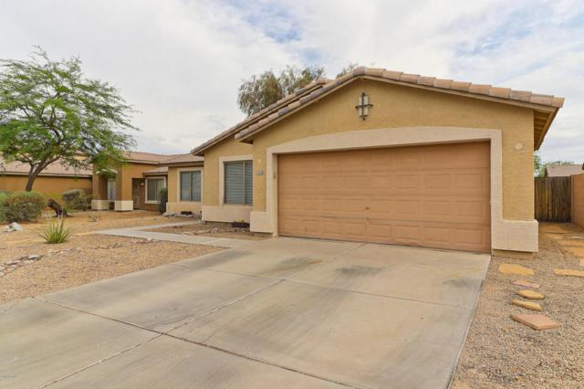 15835 W Cocopah Street, Goodyear, AZ 85338 (MLS #5781432) :: Occasio Realty