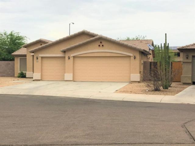 2015 S 157TH Court, Goodyear, AZ 85338 (MLS #5781445) :: Occasio Realty