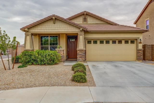 17035 W Cocopah Street, Goodyear, AZ 85338 (MLS #5781470) :: Occasio Realty