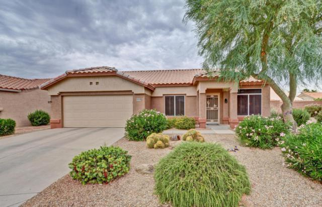 14333 W Domingo Lane, Sun City West, AZ 85375 (MLS #5781485) :: The Worth Group