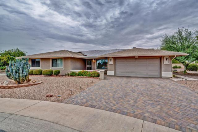 9201 W Pineridge Drive, Sun City, AZ 85351 (MLS #5781554) :: Occasio Realty