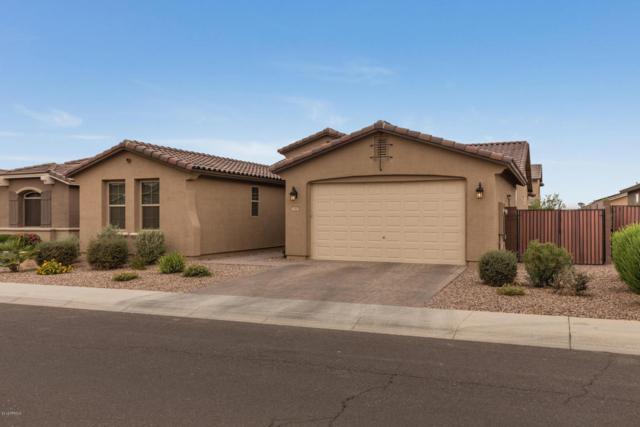 1082 W Fir Tree Road, Queen Creek, AZ 85140 (MLS #5781559) :: The Pete Dijkstra Team