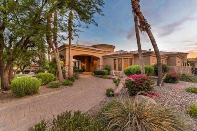 12122 N 98TH Street, Scottsdale, AZ 85260 (MLS #5781561) :: Occasio Realty
