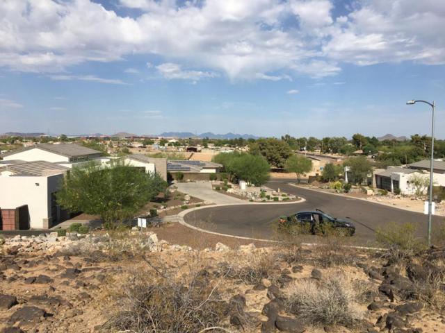 3909 W Piute Avenue, Glendale, AZ 85308 (MLS #5781657) :: Yost Realty Group at RE/MAX Casa Grande