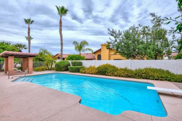 10624 E Terra Drive, Scottsdale, AZ 85258 (MLS #5781663) :: REMAX Professionals