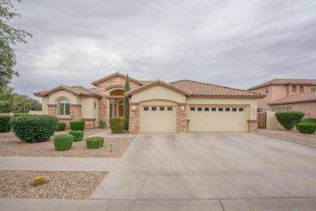 42 N Vineyard Lane, Litchfield Park, AZ 85340 (MLS #5781674) :: Devor Real Estate Associates