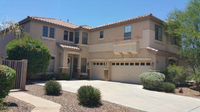 2741 W Glenhaven Drive, Phoenix, AZ 85045 (MLS #5781679) :: Essential Properties, Inc.