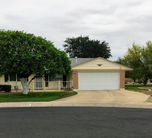 9902 W Newport Drive, Sun City, AZ 85351 (MLS #5781680) :: Occasio Realty