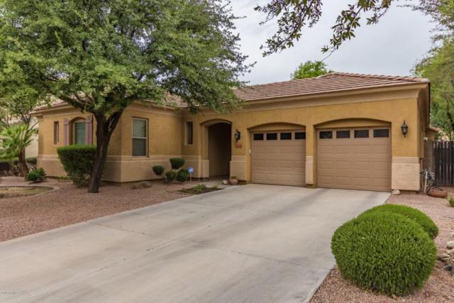 3140 E Vallejo Drive, Gilbert, AZ 85298 (MLS #5781699) :: My Home Group