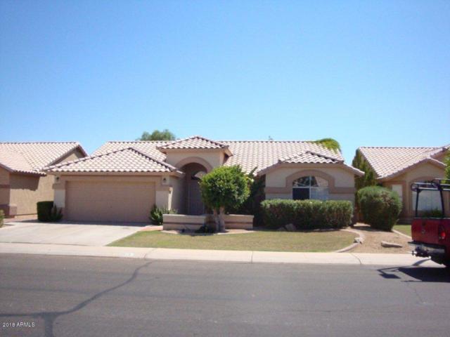 1419 E Park Avenue, Gilbert, AZ 85234 (MLS #5781738) :: Lux Home Group at  Keller Williams Realty Phoenix