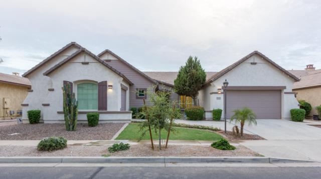 2205 E San Carlos Place, Chandler, AZ 85249 (MLS #5781748) :: Occasio Realty