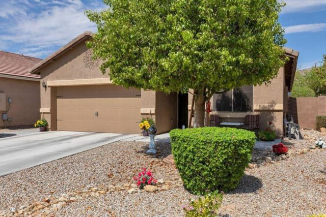33094 N Falcon Trail, Queen Creek, AZ 85142 (MLS #5781754) :: The Pete Dijkstra Team
