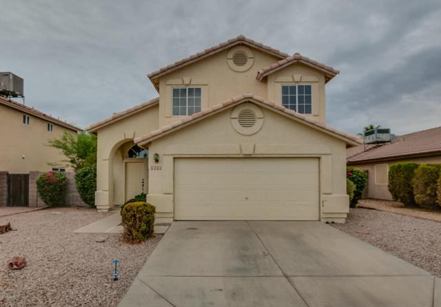 4038 W Abraham Lane, Glendale, AZ 85308 (MLS #5781767) :: Occasio Realty