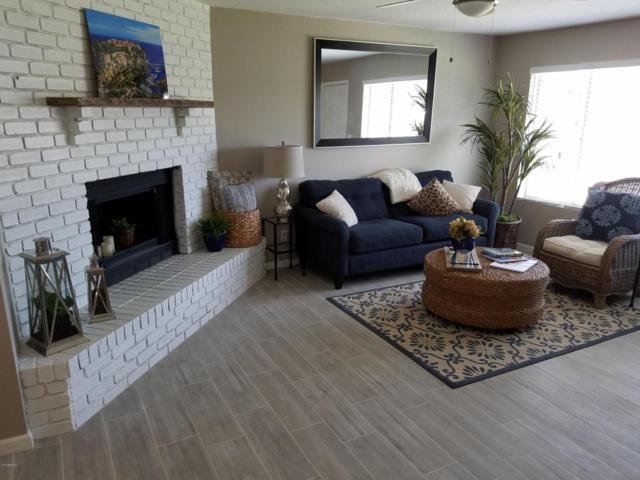 14 E Mclellan Road, Mesa, AZ 85201 (MLS #5781801) :: Occasio Realty
