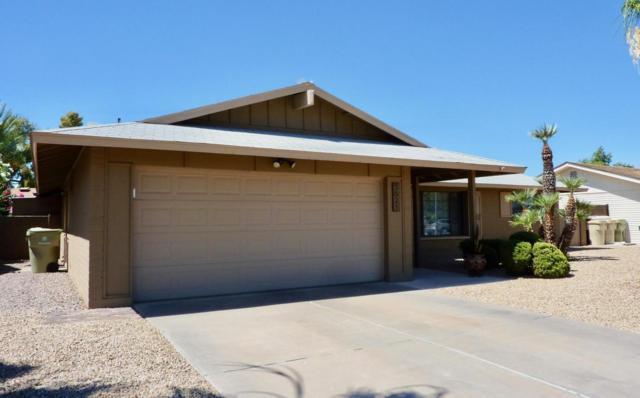 5621 W Tierra Buena Lane, Glendale, AZ 85306 (MLS #5781845) :: Occasio Realty