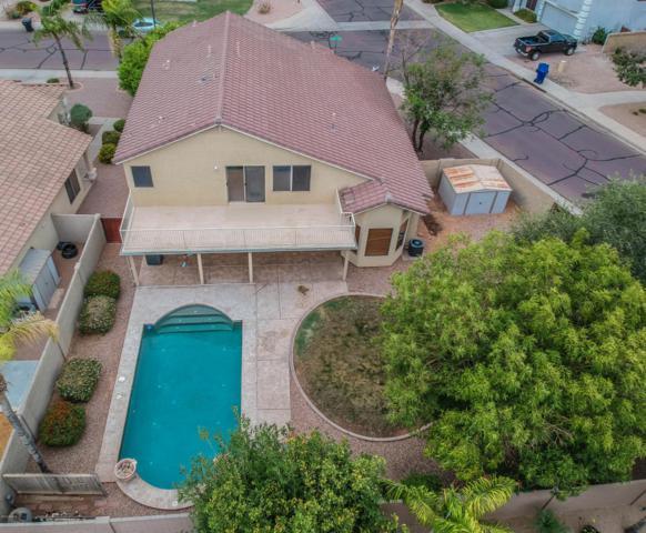 691 W Melody Avenue, Gilbert, AZ 85233 (MLS #5781856) :: Occasio Realty