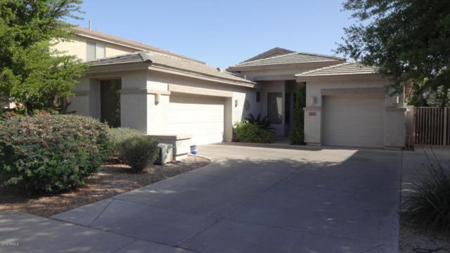 953 E Aquarius Place, Chandler, AZ 85249 (MLS #5781871) :: Arizona Best Real Estate