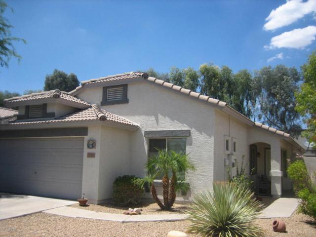 2750 E Carol Avenue, Mesa, AZ 85204 (MLS #5781875) :: Occasio Realty