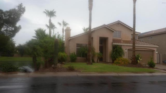 2702 W Ivanhoe Street, Chandler, AZ 85224 (MLS #5781895) :: Arizona Best Real Estate