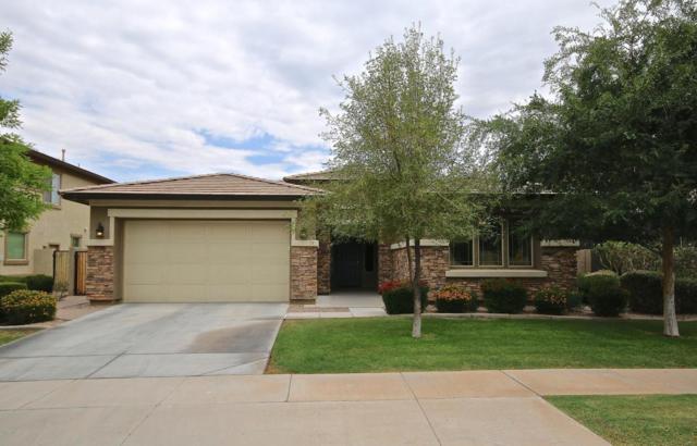 3850 E Palo Verde Street, Gilbert, AZ 85296 (MLS #5781904) :: Occasio Realty