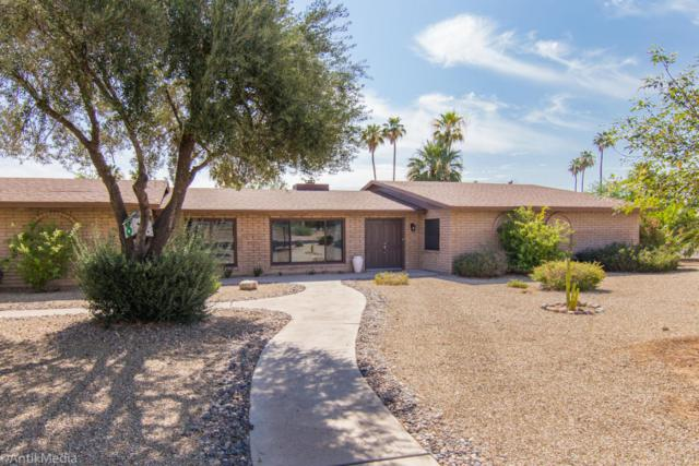 12866 W Orange Drive, Litchfield Park, AZ 85340 (MLS #5781923) :: Occasio Realty