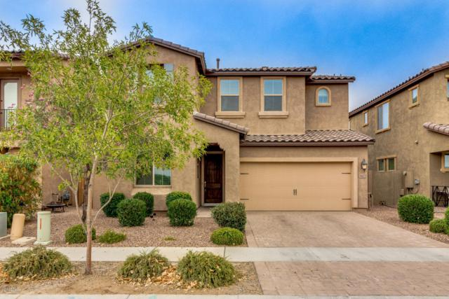3422 E Appleby Drive, Gilbert, AZ 85298 (MLS #5781926) :: Occasio Realty