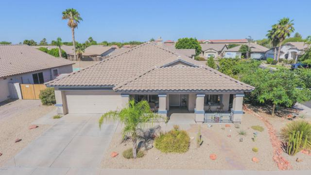 17203 N Cassi Drive, Surprise, AZ 85374 (MLS #5781938) :: Arizona Best Real Estate