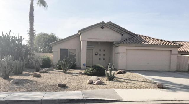 509 E Appaloosa Road, Gilbert, AZ 85296 (MLS #5781945) :: Arizona Best Real Estate