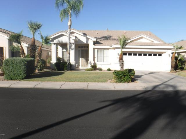 841 N Cambridge Place, Chandler, AZ 85225 (MLS #5781970) :: Arizona Best Real Estate