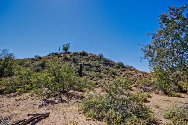 85xx E Culver Street, Mesa, AZ 85207 (MLS #5781971) :: Yost Realty Group at RE/MAX Casa Grande