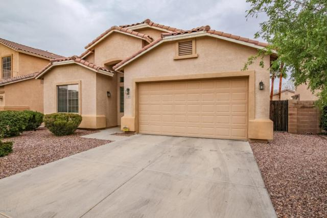 3428 W Goldmine Mountain Cove, Queen Creek, AZ 85142 (MLS #5781975) :: My Home Group