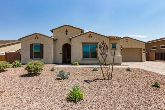 18609 W Minnezona Avenue, Goodyear, AZ 85395 (MLS #5781983) :: Phoenix Property Group