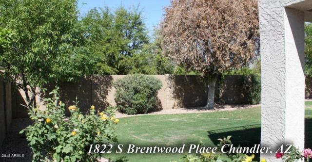 1822 S Brentwood Place, Chandler, AZ 85286 (MLS #5781985) :: Phoenix Property Group