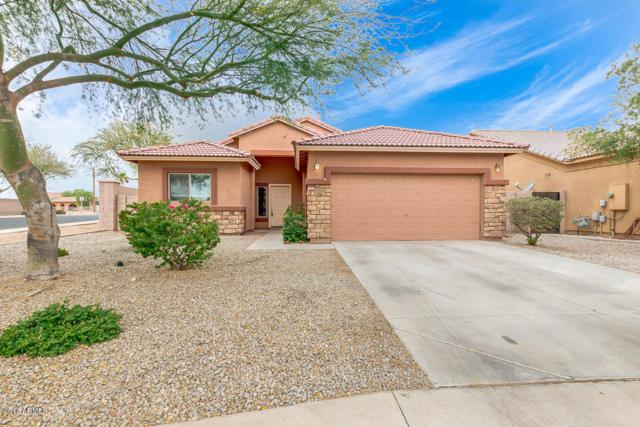 3318 S 122ND Lane, Tolleson, AZ 85353 (MLS #5781988) :: My Home Group