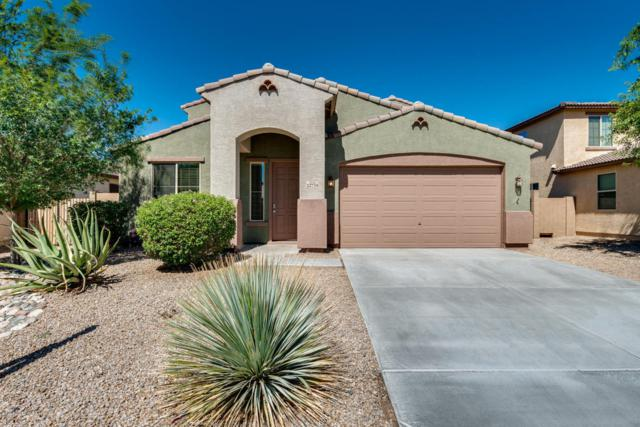 22734 N 123RD Drive, Sun City West, AZ 85375 (MLS #5782023) :: The Worth Group