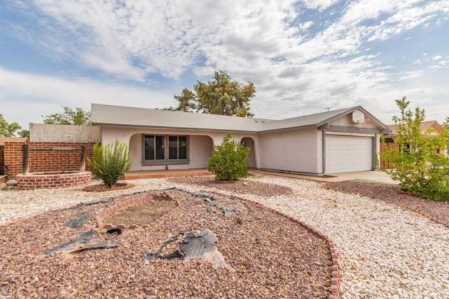 464 W Highland Street, Chandler, AZ 85225 (MLS #5782055) :: Arizona Best Real Estate