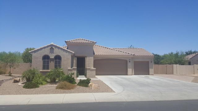 10962 E Quarry Circle, Mesa, AZ 85212 (MLS #5782074) :: My Home Group