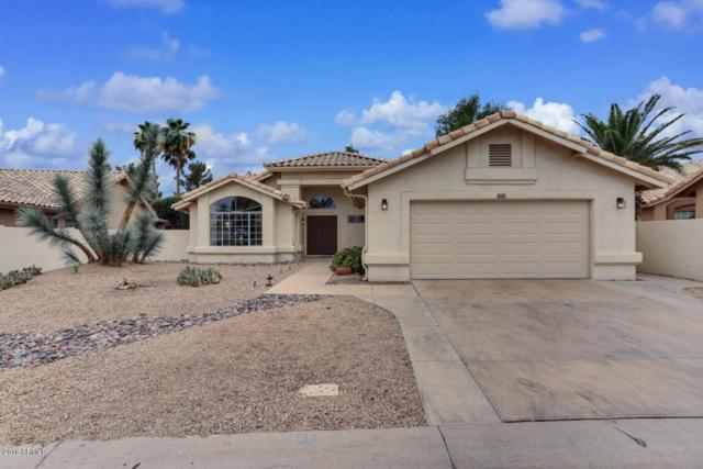 17446 N Rainbow Circle, Surprise, AZ 85374 (MLS #5782079) :: Arizona Best Real Estate