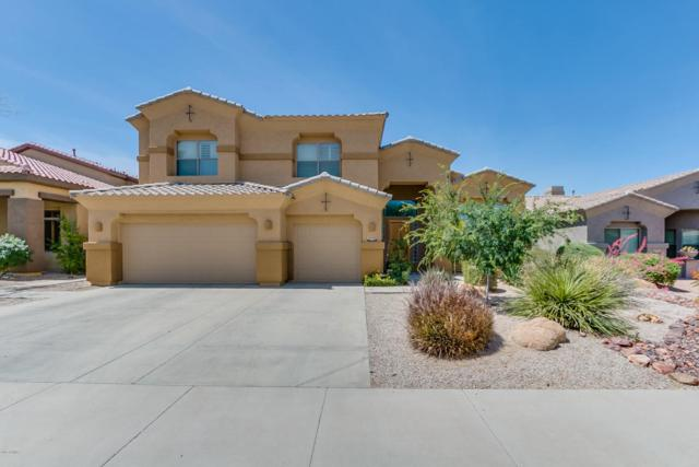 18347 W Sweet Acacia Drive, Goodyear, AZ 85338 (MLS #5782107) :: Kortright Group - West USA Realty