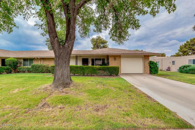 9729 W Shasta Drive, Sun City, AZ 85351 (MLS #5782142) :: Riddle Realty