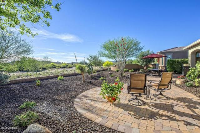 28620 N 129TH Lane, Peoria, AZ 85383 (MLS #5782148) :: Arizona Best Real Estate